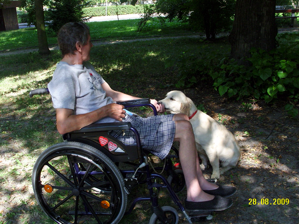 Socjalizacja - wózek inwalidzki - Esta