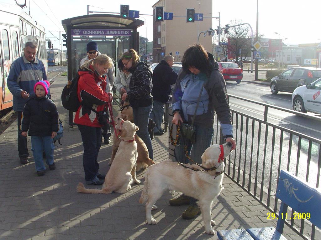 Miejsce publiczne - komunikacja miejska - tramwaj