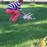 Igraszki na podwórku