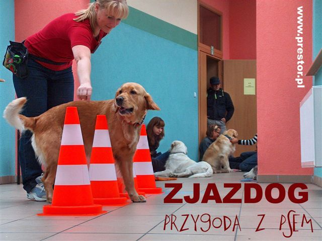 Zjazdog Jurajski